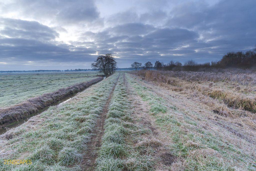 Eerste winter in Nederland