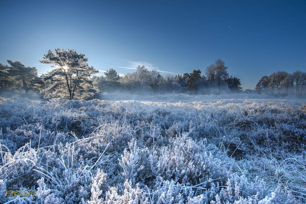 Zonsopkomst op de heide - Winterlandschap in Drenthe