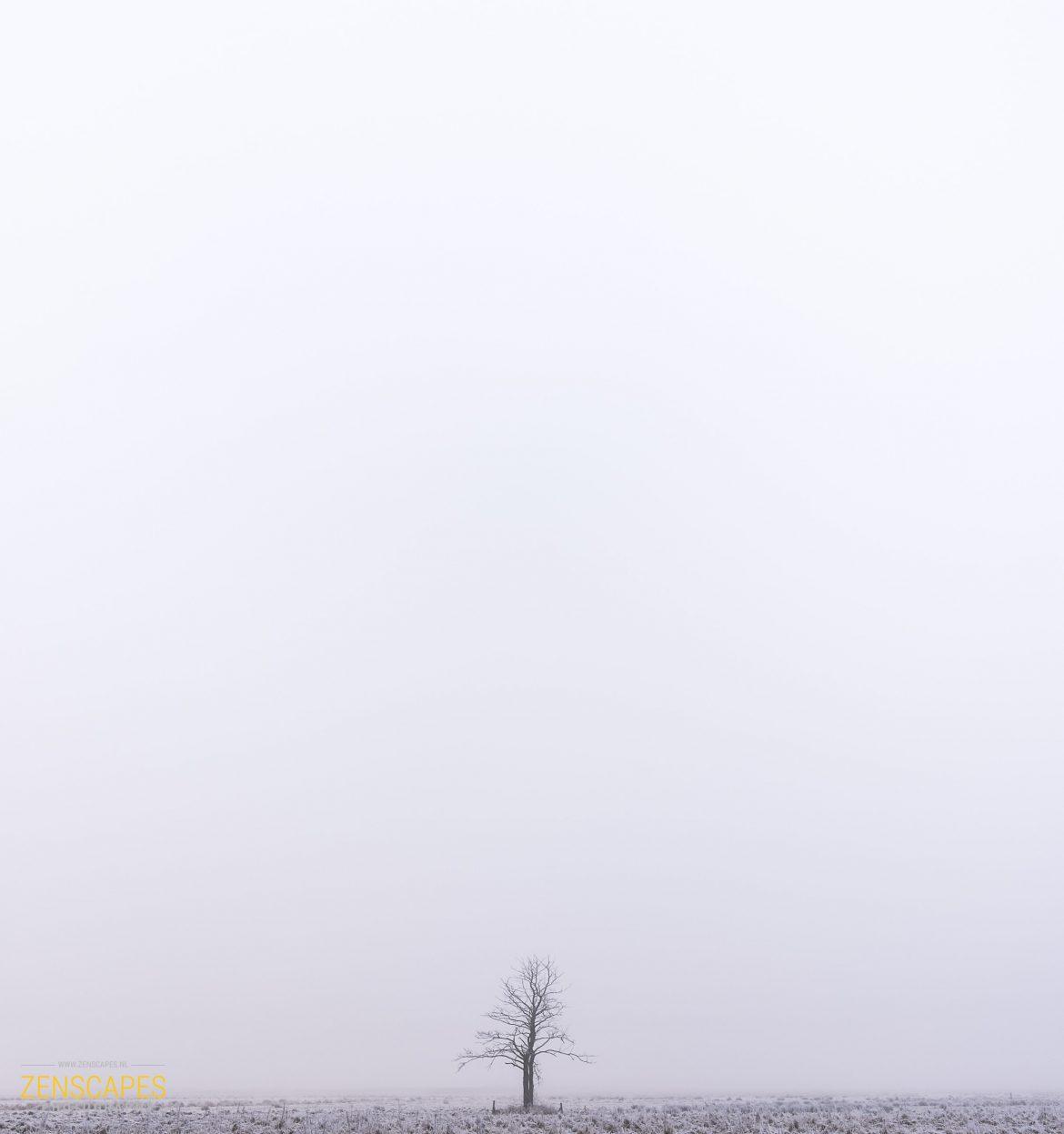 Serene rust in De Onlanden - Groningen