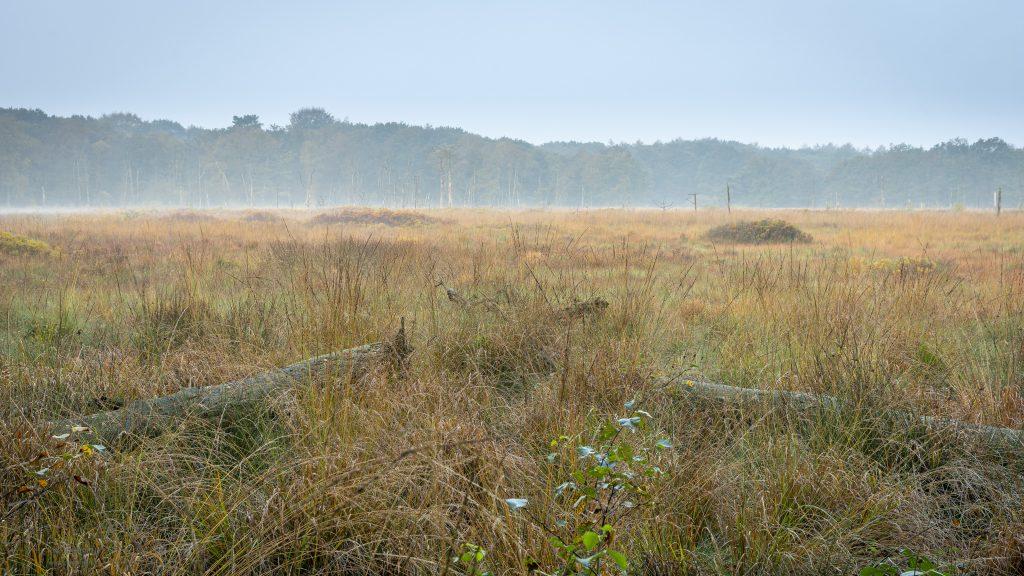 Landschapsfoto van de Appelbergen - Glimmen