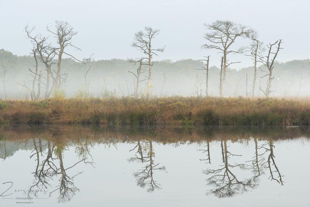 Toch nog wat mist - De Appelbergen - Glimmen