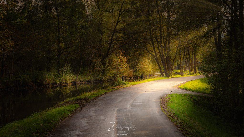 Herfstkleuren aan het Paterswoldse Meer - Landschapsfotografie in de herfst