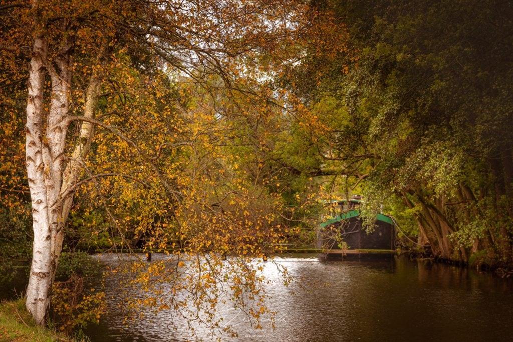 Boot tussen de bomen in het Hoornse Diep - Herfstkleuren in de landschapsfotografie