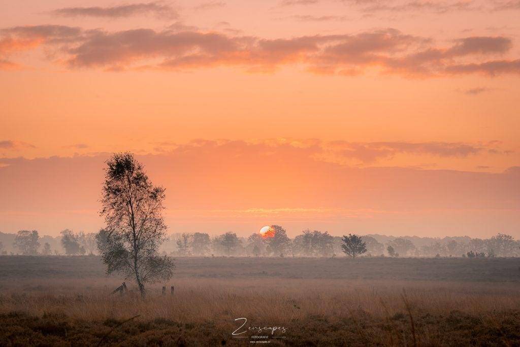 Foto van zonsopkomst in het Balloërveld
