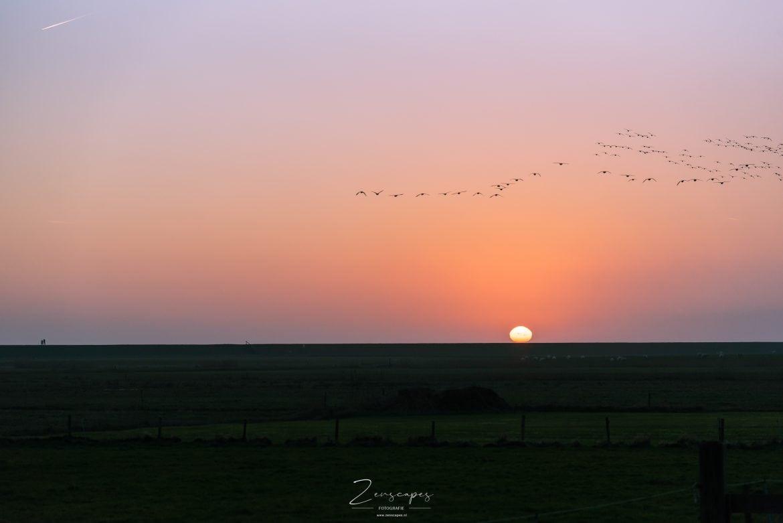 Terschelling - Zonsondergang aan de Waddendijk