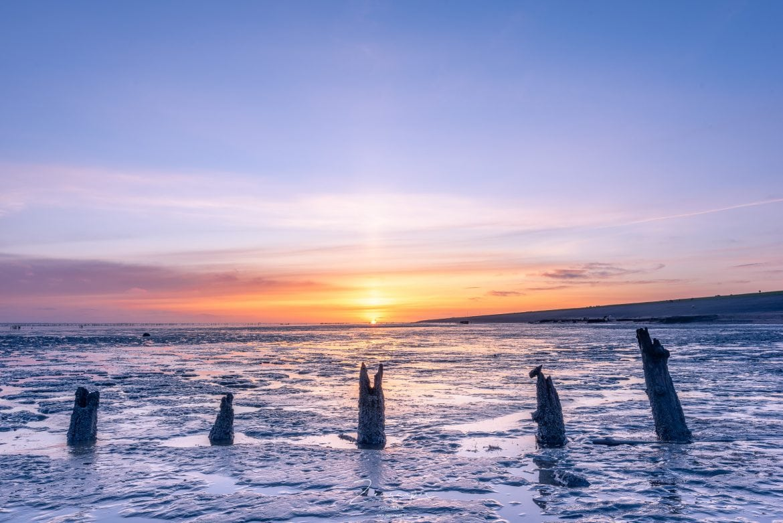 Waddenfoto Paesens - Moddergat bij zonsopkomst