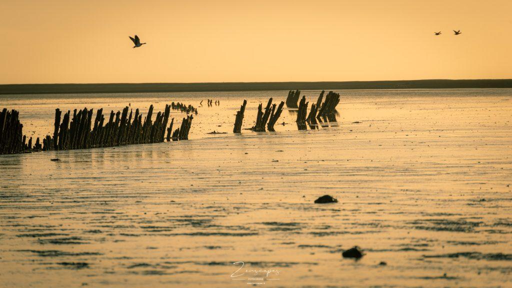 Landschapsfoto bij Paesens - Moddergat - De Waddenzee richting Schiermonnikoog