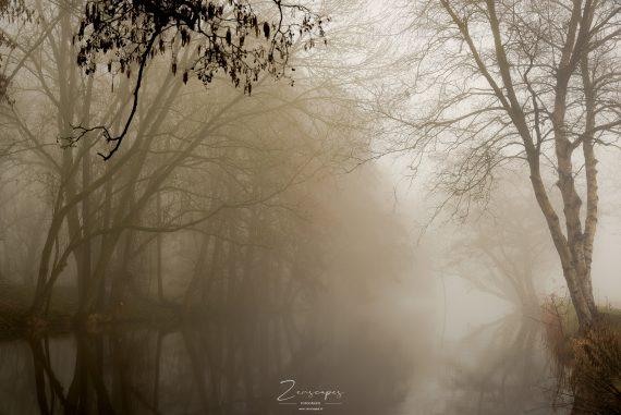 Hoornse Diep - Fotograferen in mistige omstandigheden
